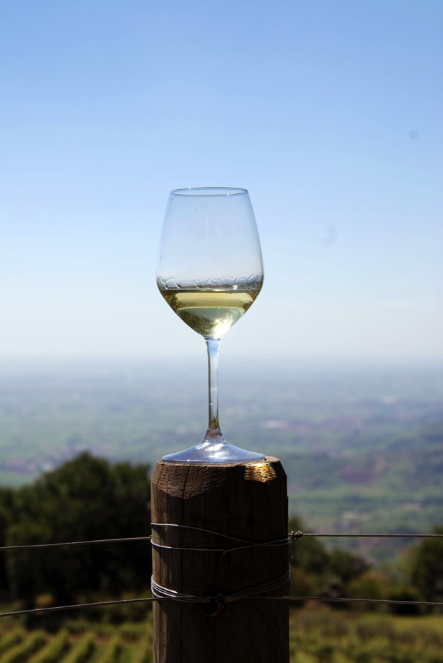 Soave preview 2014 074