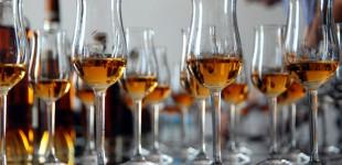 Cognac - Mein Reiserückblick auf ganz besondere Philosophien, Genüsse und Menschen