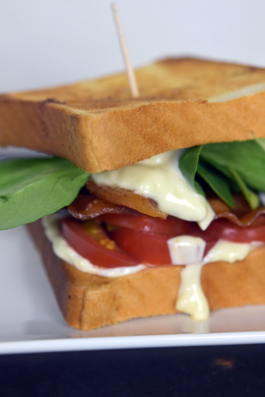 ino s pancetta lettuce and tomato s and wich stir tomato bacon lettuce ...